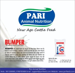 Pahudhan Animal Nutrition